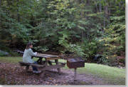 Lock_Haven/upperpinebottom_picnic_edge.jpg