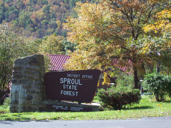 Renovo_Pa/sproul_state_forest.jpg